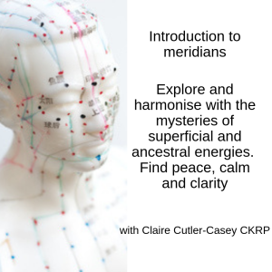 Introduction to ancestral and superficial meridians